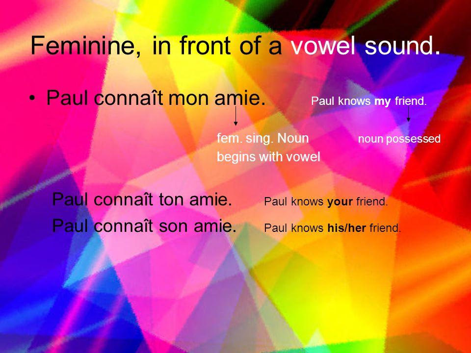 Feminine, in front of a vowel sound.Paul connaît mon amie.