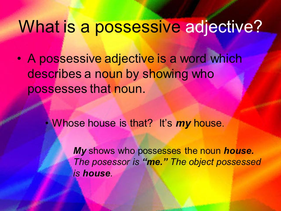 What is a possessive adjective.