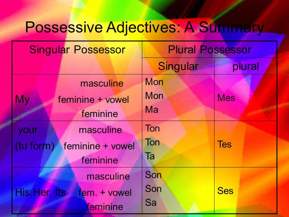 Possessive Adjectives: A Summary Singular PossessorPlural Possessor Singularplural masculine My feminine + vowel feminine Mon Ma Mes your masculine (tu form) feminine + vowel feminine Ton Ta Tes masculine His,Her, Its fem.