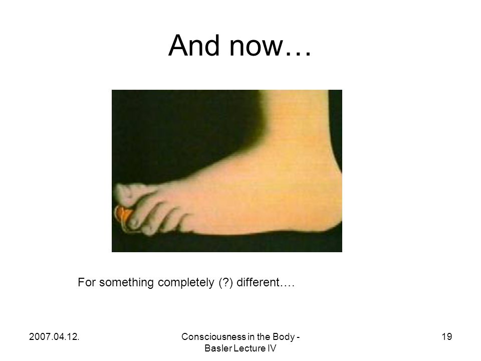 2007.04.12.Consciousness in the Body - Basler Lecture IV 19 And now… For something completely (?) different….