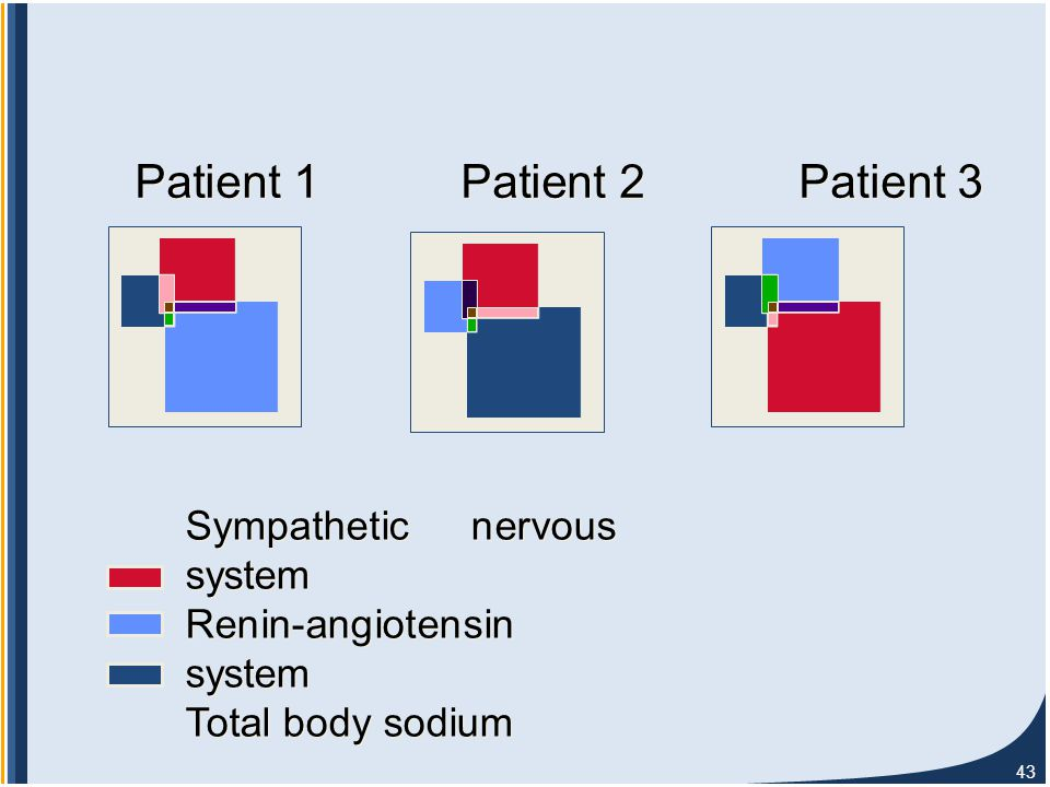 43 Sympathetic nervous system Renin-angiotensin system Total body sodium Sympathetic nervous system Renin-angiotensin system Total body sodium Patient 1 Patient 2 Patient 3