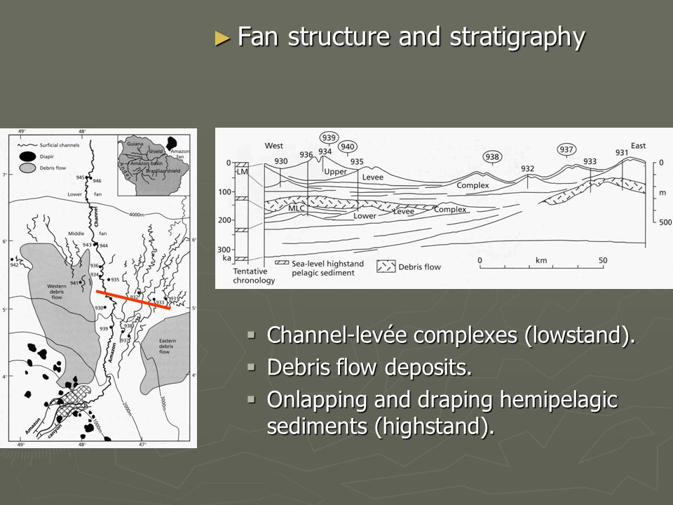 ► Fan structure and stratigraphy  Channel-levée complexes (lowstand).
