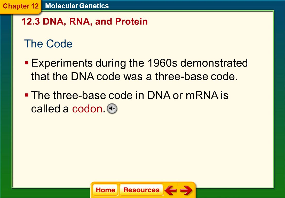 Molecular Genetics RNA Processing  The code on the DNA is interrupted periodically by sequences that are not in the final mRNA.