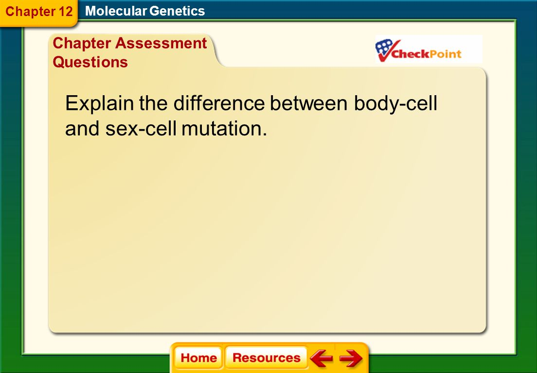 A. They determine size. B. They determine body plan. C. They determine sex. Explain how Hox genes affect an organism. Molecular Genetics Chapter Asses