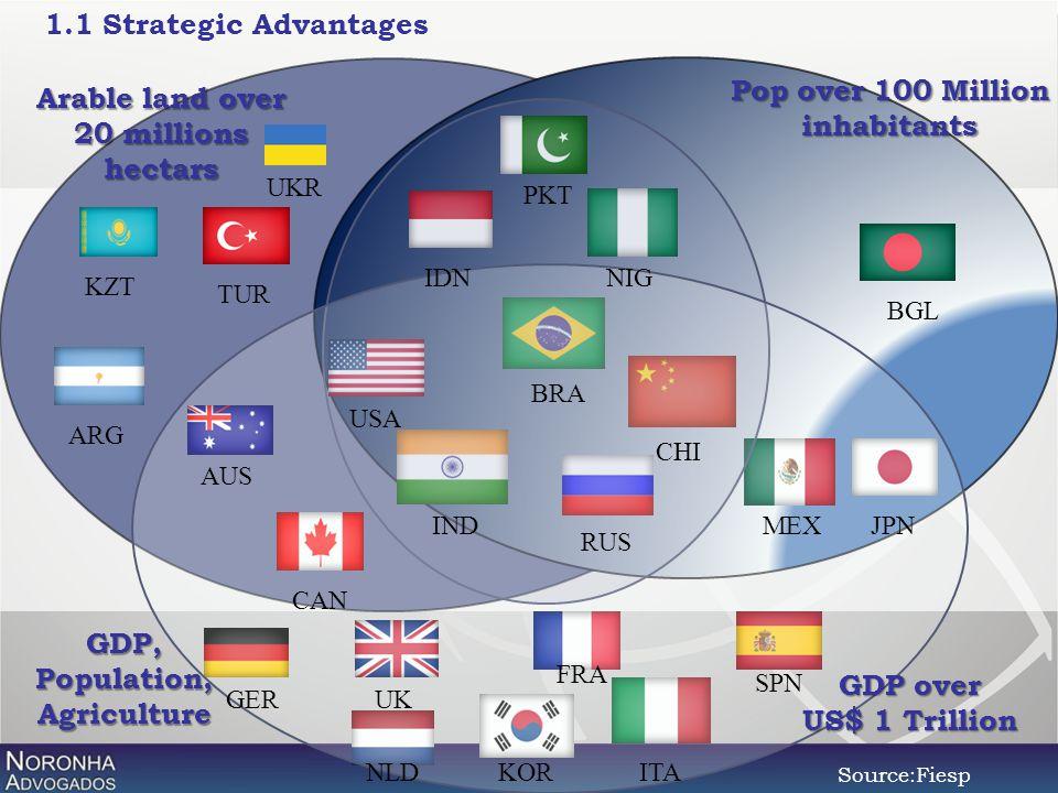 1.1 Strategic Advantages Pop over 100 Million inhabitants GDP over US$ 1 Trillion GDP,Population,Agriculture Arable land over 20 millions hectars ARG