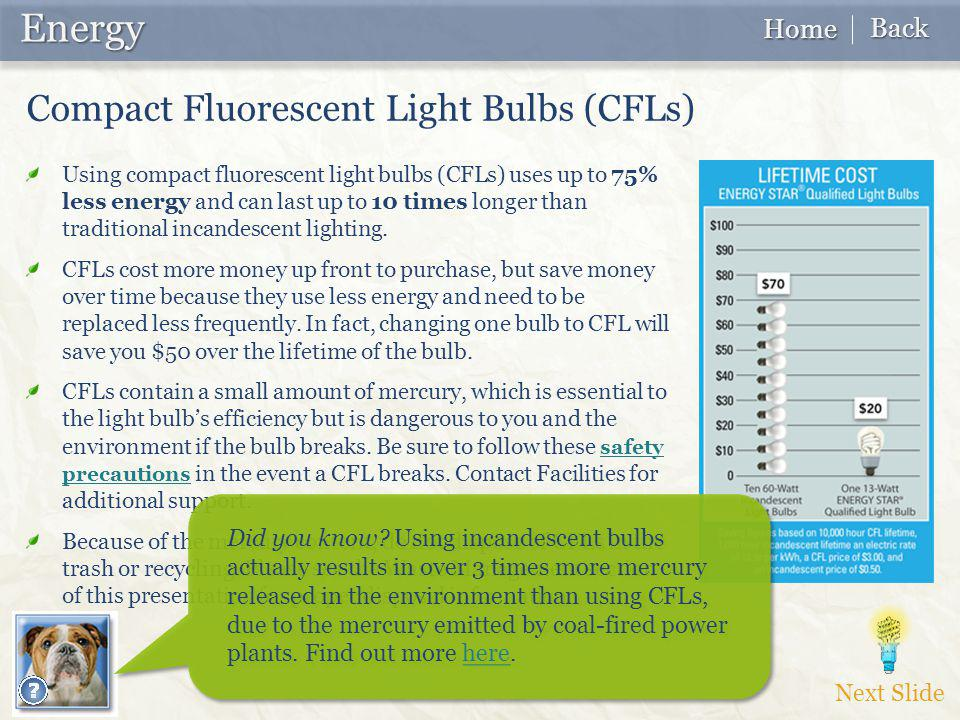 Using compact fluorescent light bulbs (CFLs) uses up to 75% less energy and can last up to 10 times longer than traditional incandescent lighting.