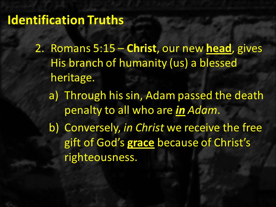 Identification Truths 2.Romans 5:15 – Christ, our new head, gives His branch of humanity (us) a blessed heritage.