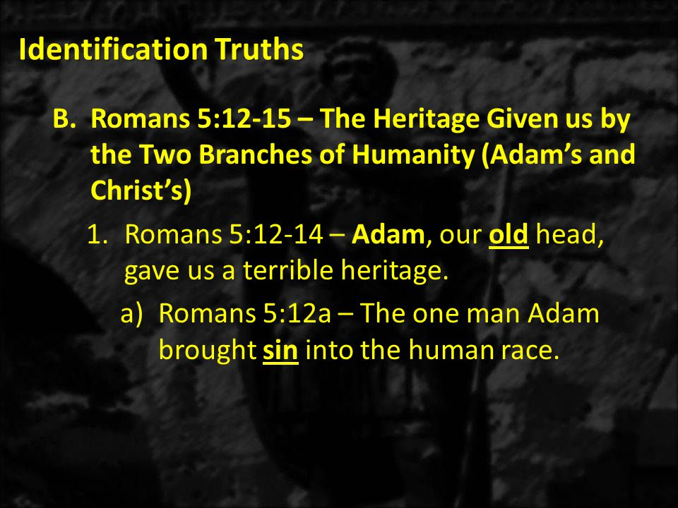 Identification Truths B.Romans 5:12-15 – The Heritage Given us by the Two Branches of Humanity (Adam's and Christ's) 1.Romans 5:12-14 – Adam, our old head, gave us a terrible heritage.