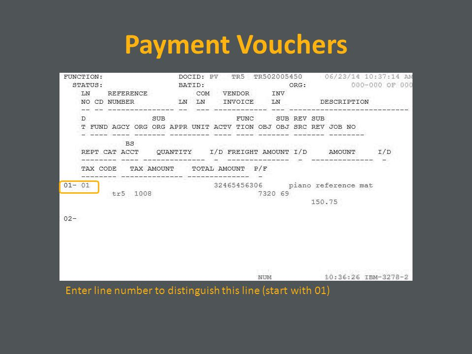 Payment Vouchers Enter line number to distinguish this line (start with 01)