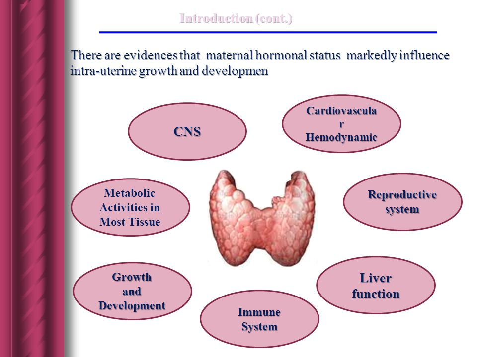 CNS Metabolic Activities in Most Tissue Cardiovascula r Hemodynamic Reproductive system Liver function Immune System Growth and Development There are evidences that maternal hormonal status markedly influence intra-uterine growth and developmen