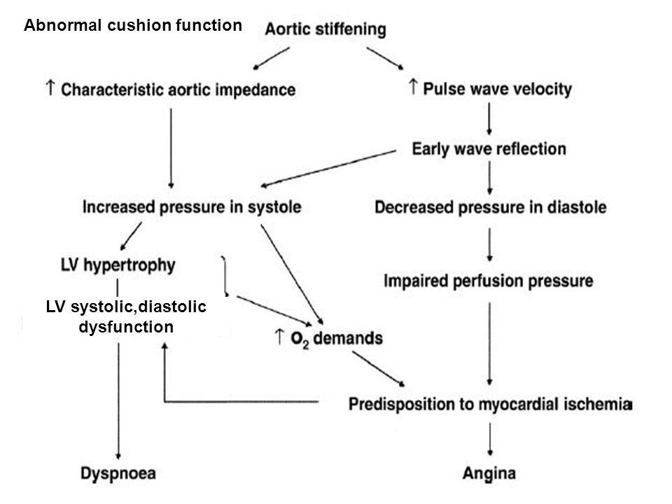 LV systolic,diastolic dysfunction Abnormal cushion function