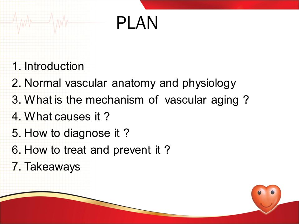 PLAN 1.Introduction 2.Normal vascular anatomy and physiology 3.What is the mechanism of vascular aging ? 4.What causes it ? 5.How to diagnose it ? 6.H