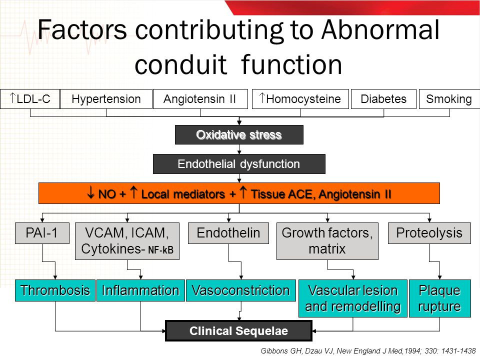 Factors contributing to Abnormal conduit function PAI-1 Endothelial dysfunction Proteolysis  NO +  Local mediators +  Tissue ACE, Angiotensin II VC