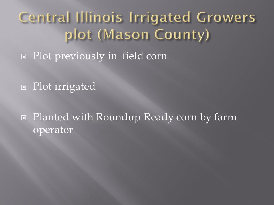  Plot previously in field corn  Plot irrigated  Planted with Roundup Ready corn by farm operator
