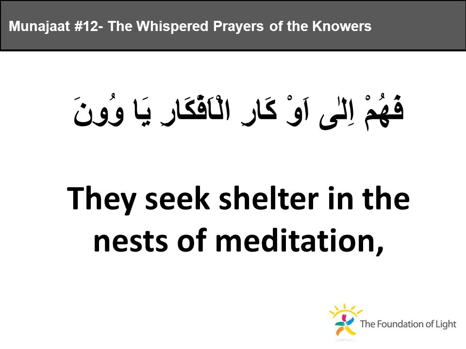 فَهُمْ اِلٰى اَوْ كَارِ الْاَفْكَارِ يَا وُونَ They seek shelter in the nests of meditation, Munajaat #12- The Whispered Prayers of the Knowers