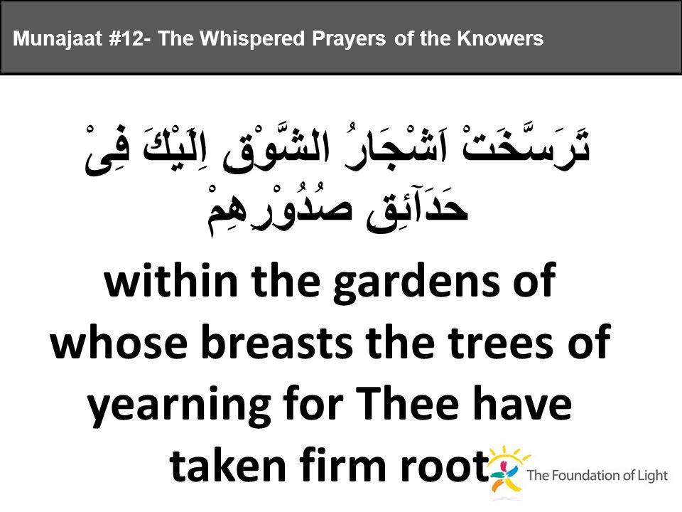 تَرَسَّخَتْ اَشْجَارُ الشَّوْقِ اِلَيْكَ فِىْ حَدَآئِقِ صُدُوْرِهِمْ Munajaat #12- The Whispered Prayers of the Knowers within the gardens of whose breasts the trees of yearning for Thee have taken firm root
