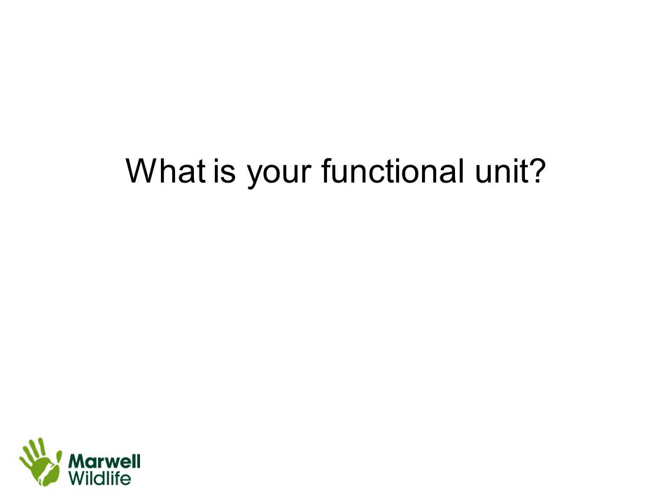 What is your functional unit