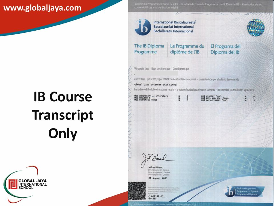 IB Course Transcript Only