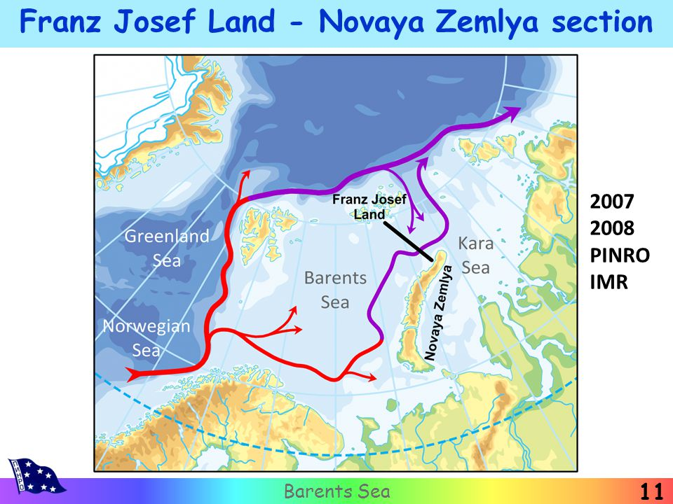Franz Josef Land - Novaya Zemlya section Barents Sea 11 2007 2008 PINRO IMR
