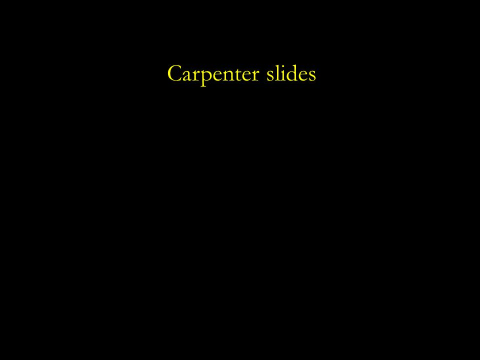 Carpenter slides