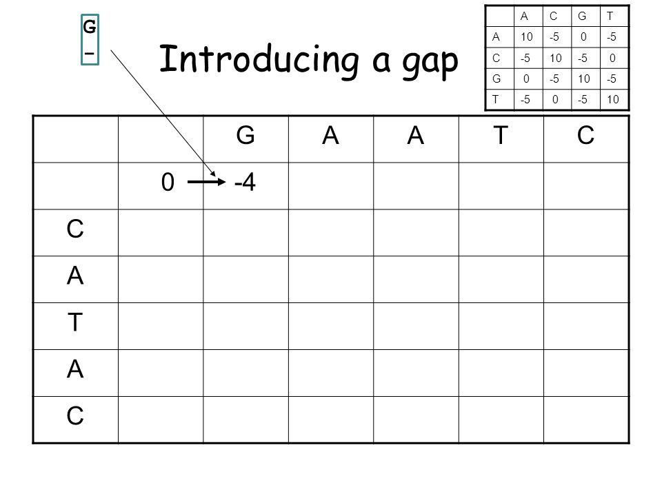 Introducing a gap GAATC 0-4 C A T A C G-G- ACGT A10-5 0 C 10-5 0 G 0 10-5 T 0 10
