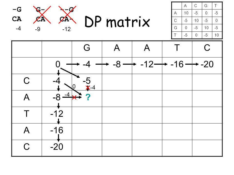 DP matrix GAATC 0-4-8-12-16-20 C-4-5 A-8 .