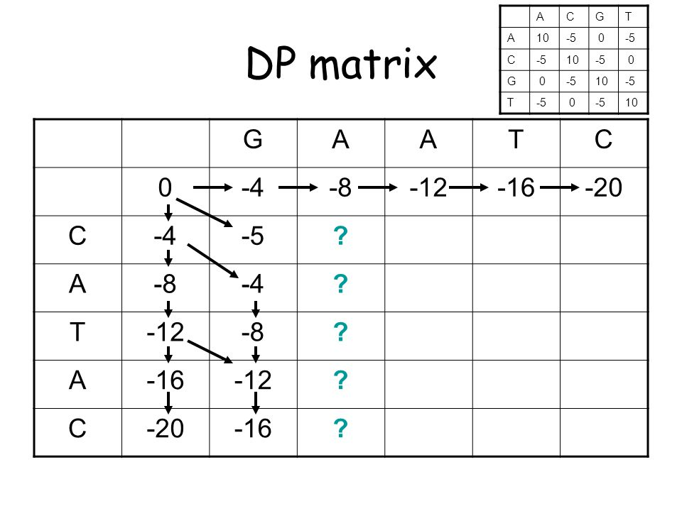 DP matrix GAATC 0-4-8-12-16-20 C-4-5. A-8-4. T-12-8.