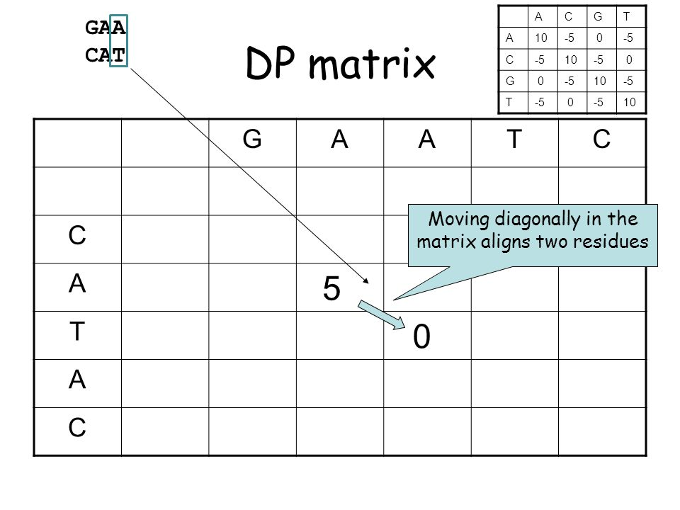 DP matrix GAATC C A 5 T 0 A C Moving diagonally in the matrix aligns two residues GAA CAT ACGT A10-5 0 C 10-5 0 G 0 10-5 T 0 10
