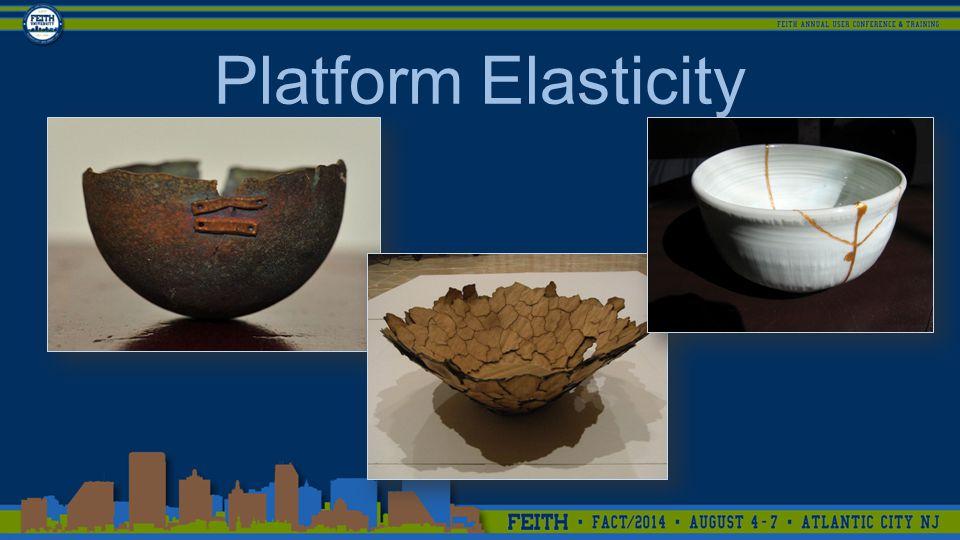 Platform Elasticity