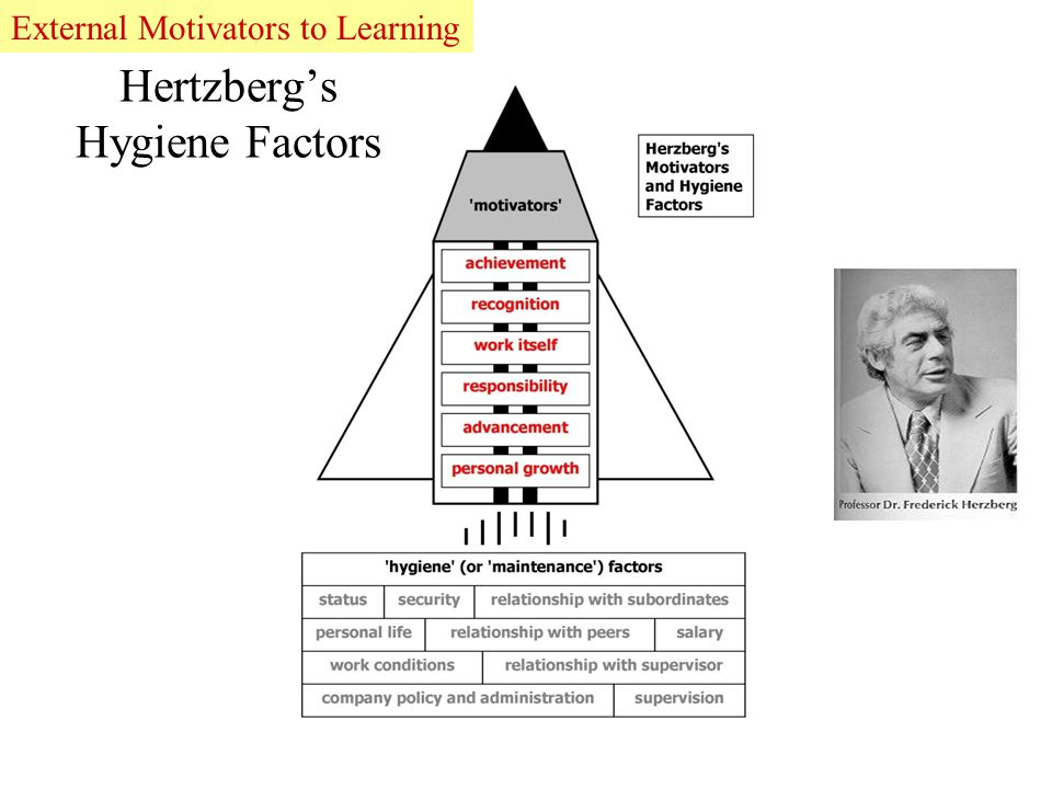 Hertzberg's Hygiene Factors Recognise they have failedExternal Motivators to Learning