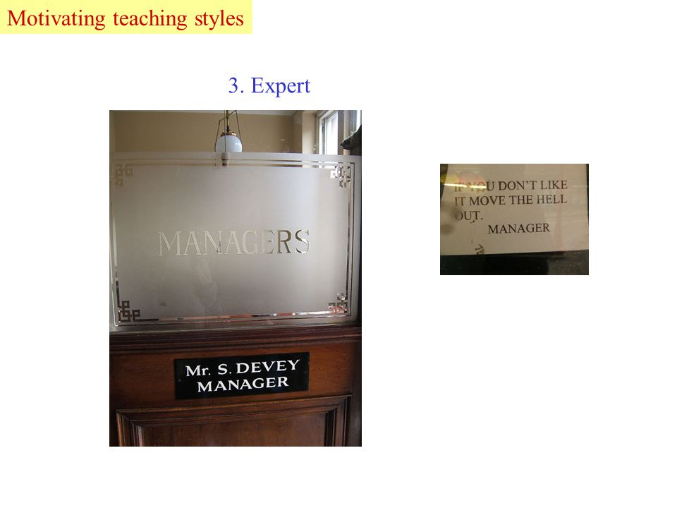 3. Expert LeadMotivating teaching styles