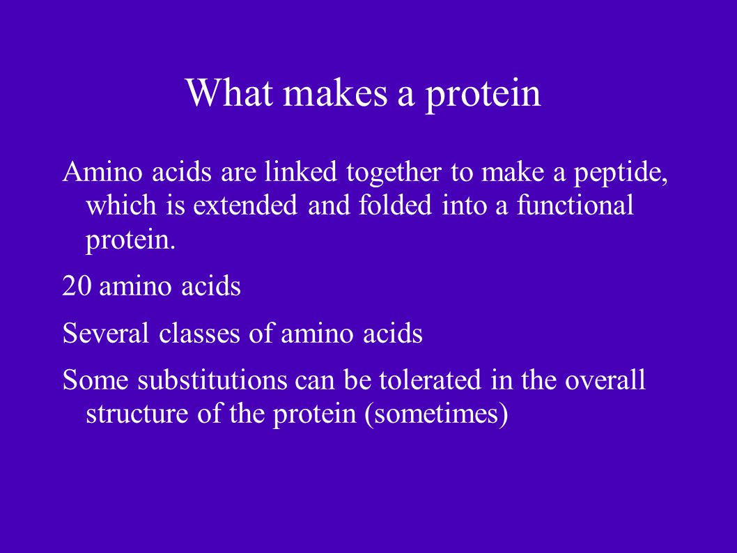 What makes a protein Amino acids are linked together to make a peptide, which is extended and folded into a functional protein.