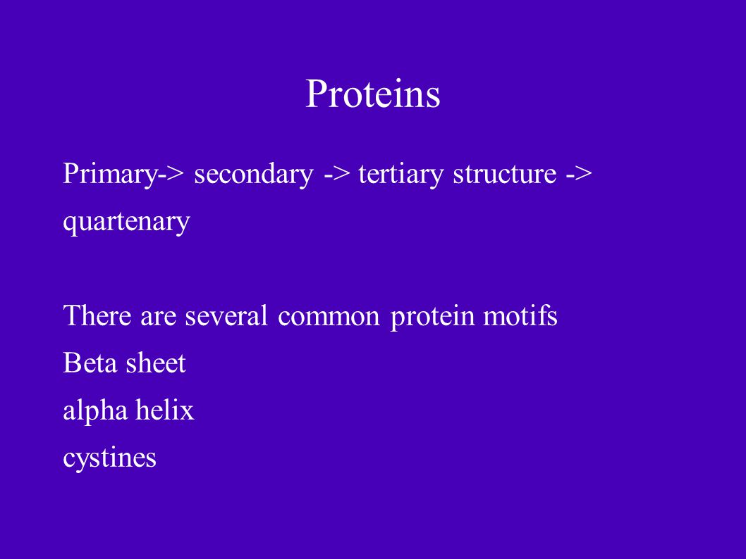 Proteins Primary-> secondary -> tertiary structure -> quartenary There are several common protein motifs Beta sheet alpha helix cystines