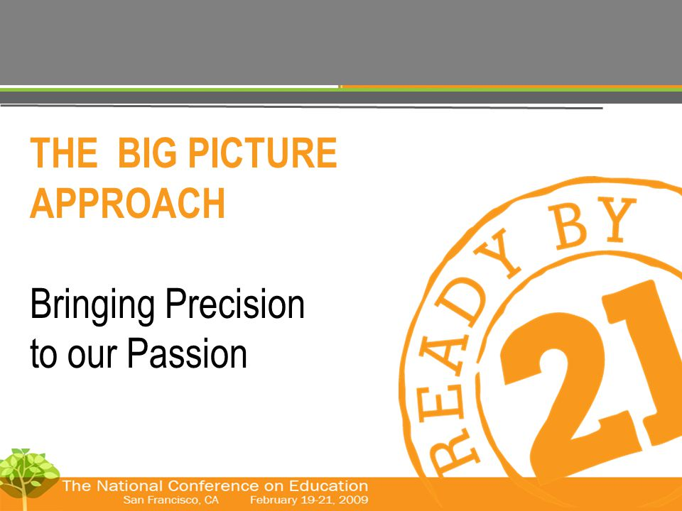 © The Forum for Youth Investment 2008 THE BIG PICTURE APPROACH Bringing Precision to our Passion