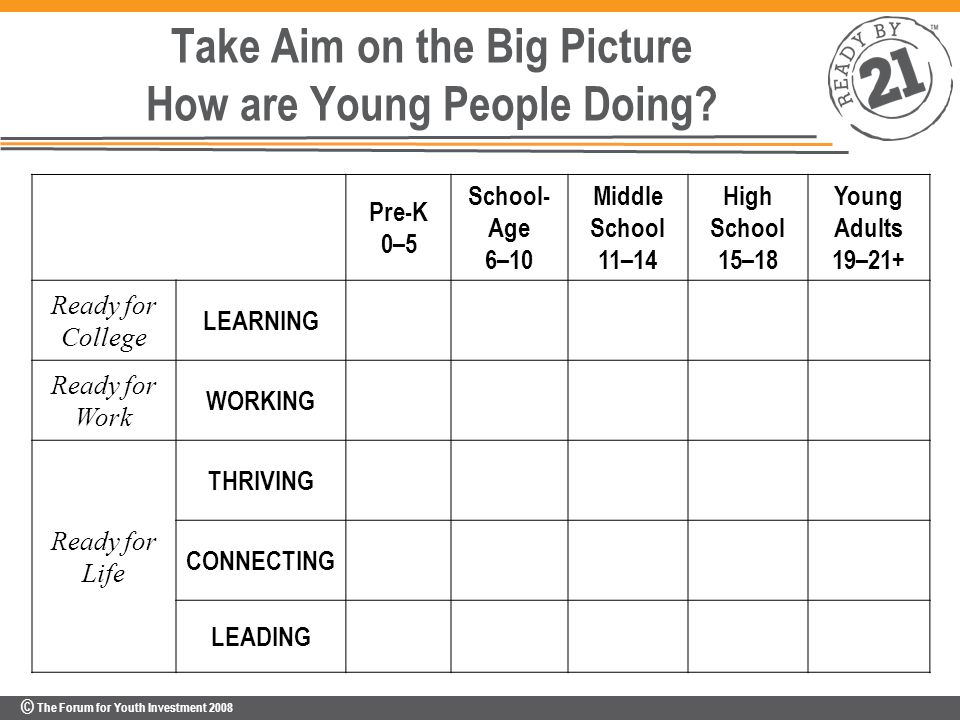 © The Forum for Youth Investment 2008 Take Aim on the Big Picture How are Young People Doing.