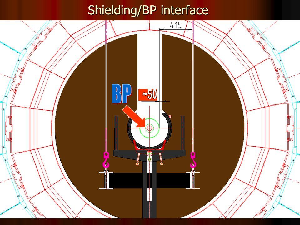 19 Shielding/BP interface