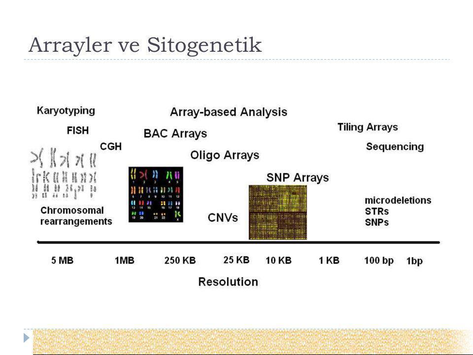 Arrayler ve Sitogenetik