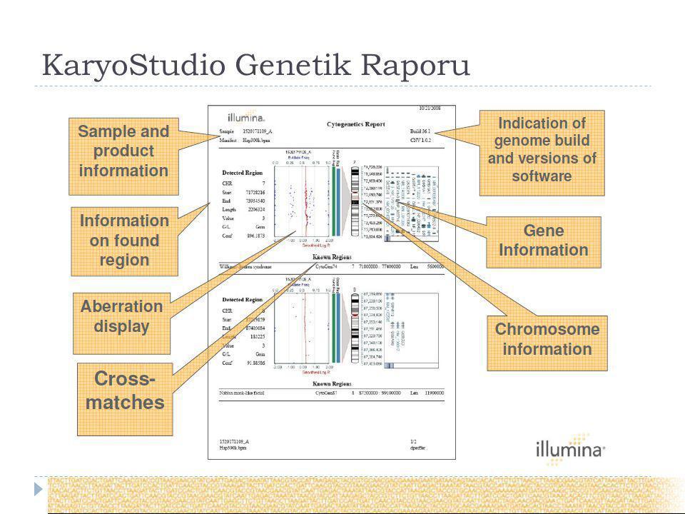 KaryoStudio Genetik Raporu