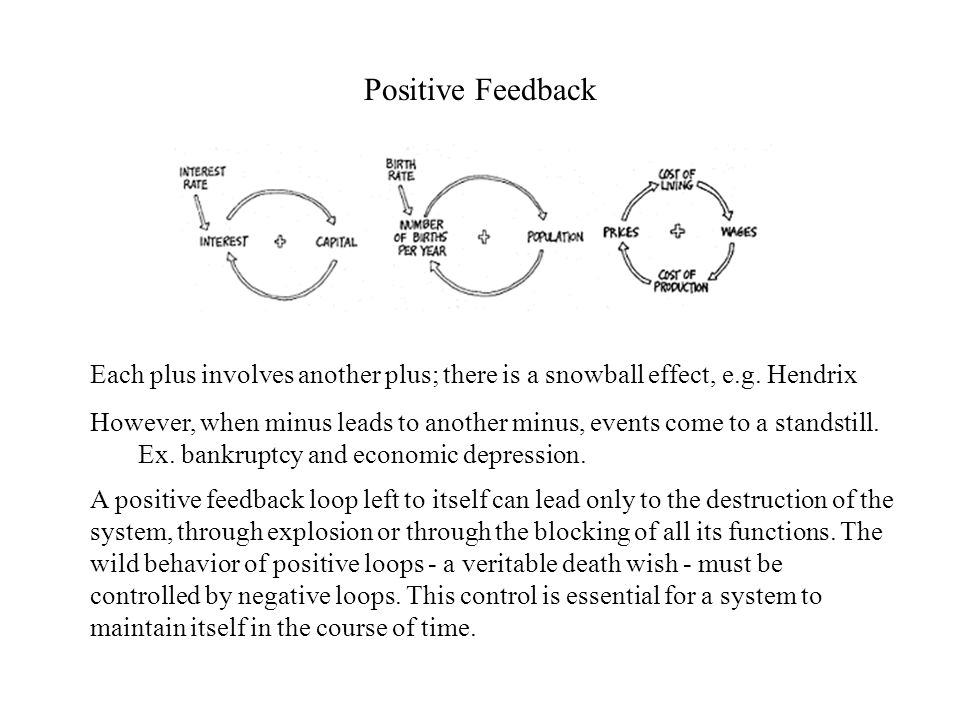Positive Feedback accelerates a system ' s transformation in the same direction, leading to exponential growth or decline Negative Feedback slows down a system ' s transformation, leading to equilibrium