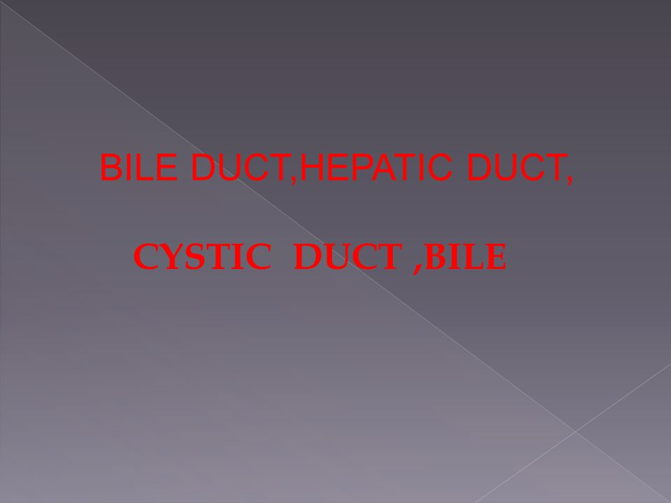 BILE DUCT,HEPATIC DUCT, CYSTIC DUCT,BILE