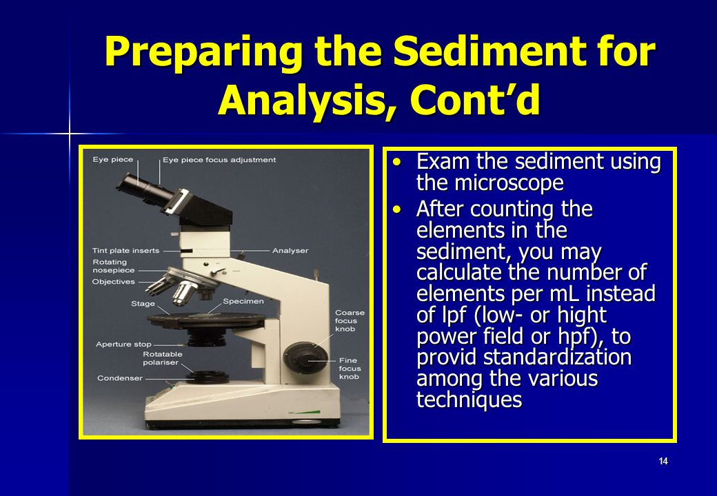 14 Exam the sediment using the microscopeExam the sediment using the microscope After counting the elements in the sediment, you may calculate the num