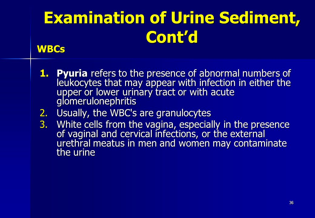 36 WBCs 1.Pyuria refers to the presence of abnormal numbers of leukocytes that may appear with infection in either the upper or lower urinary tract or