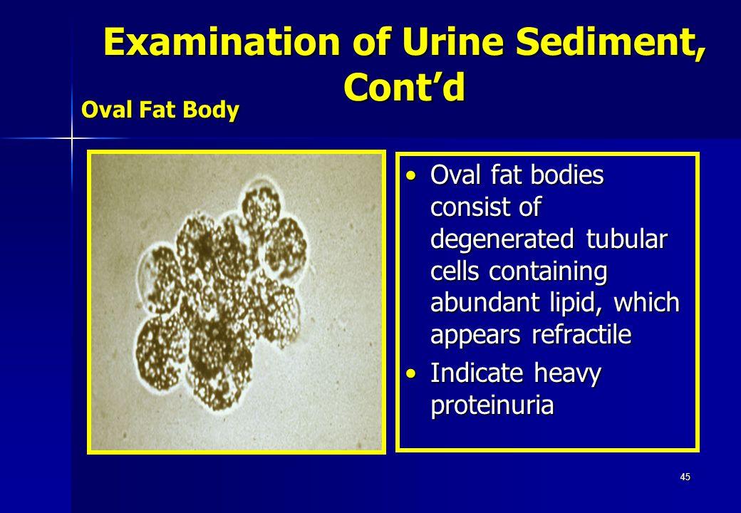 45 Oval Fat Body Oval fat bodies consist of degenerated tubular cells containing abundant lipid, which appears refractileOval fat bodies consist of de