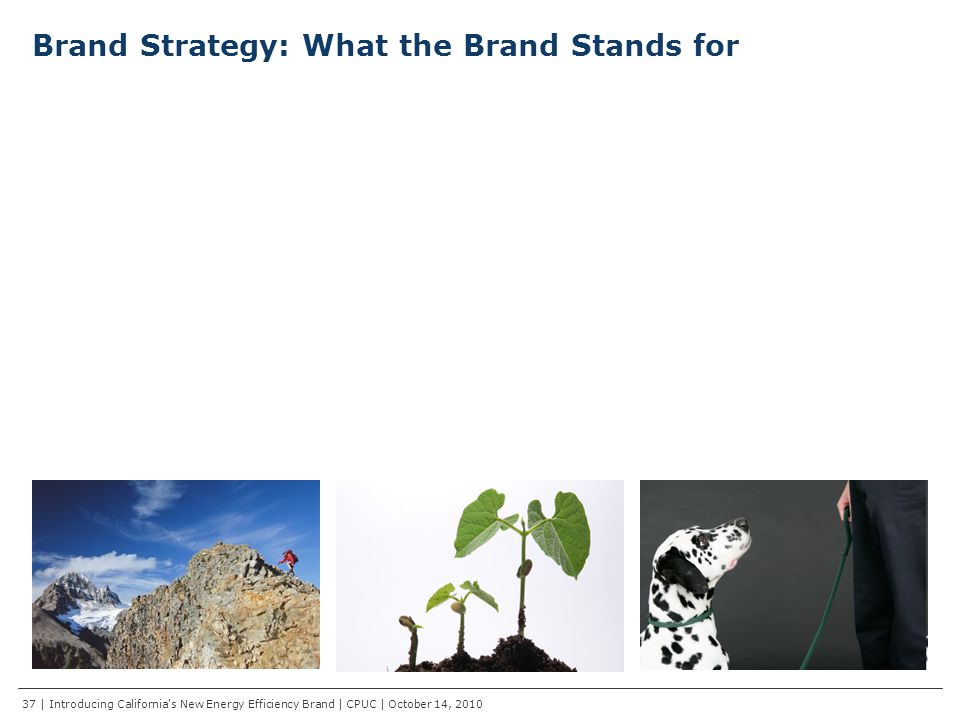 Brand Strategy: What the Brand Stands for Progressive Inspiration We find the next ways to help you make the most practical, relevant energy choices every day Meaningful Change We lead change and measure progress to make the movement meaningful to everyone Trusted Source We are a go-to authority for all smarter energy developments and information 37 | Introducing California s New Energy Efficiency Brand | CPUC | October 14, 2010