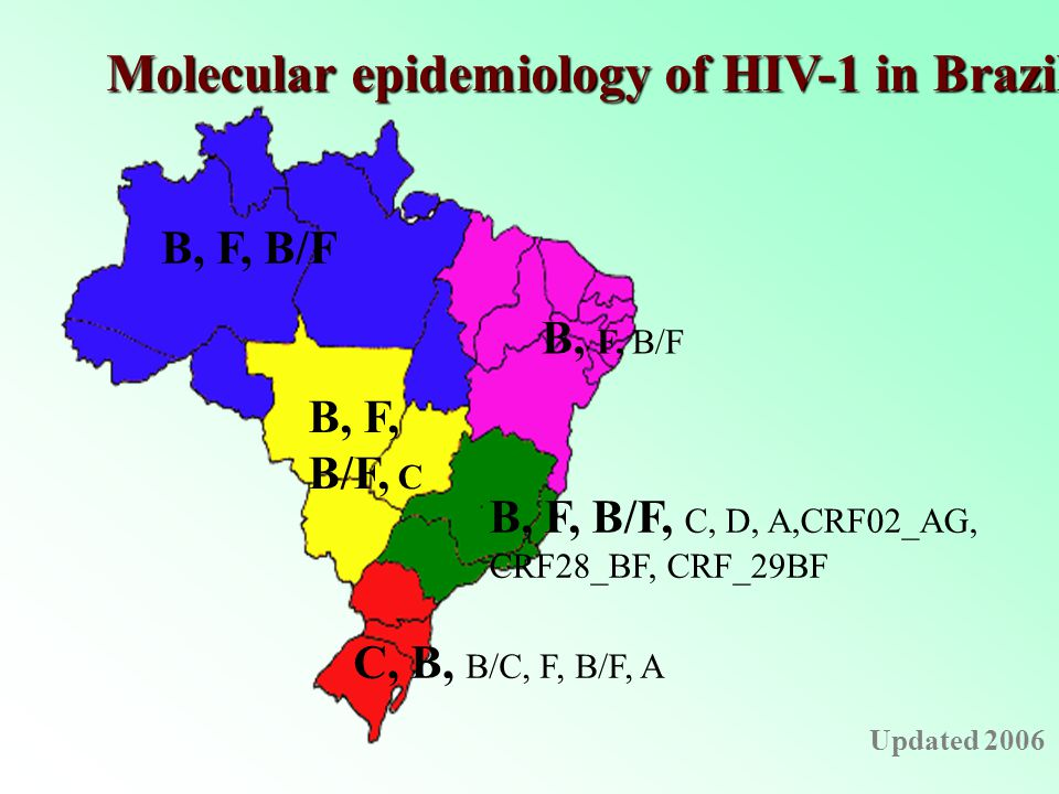 B, F, B/F B, F, B/F, C, D, A,CRF02_AG, CRF28_BF, CRF_29BF C, B, B/C, F, B/F, A B, F, B/F B, F, B/F, C Molecular epidemiology of HIV-1 in Brazil Updated 2006
