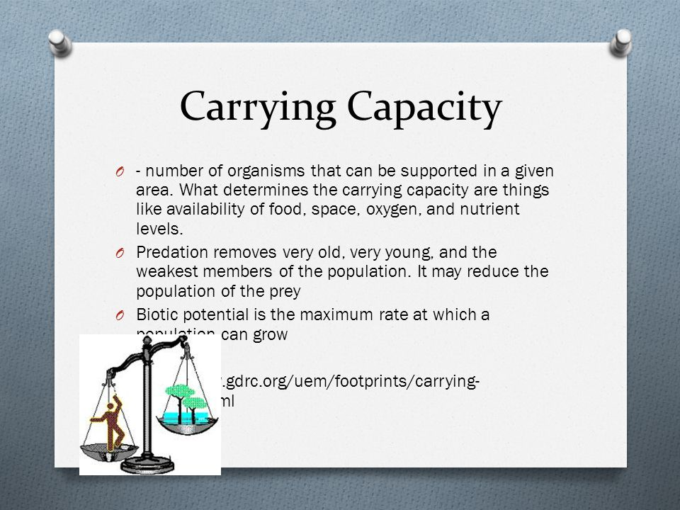 Carrying Capacity O - number of organisms that can be supported in a given area. What determines the carrying capacity are things like availability of
