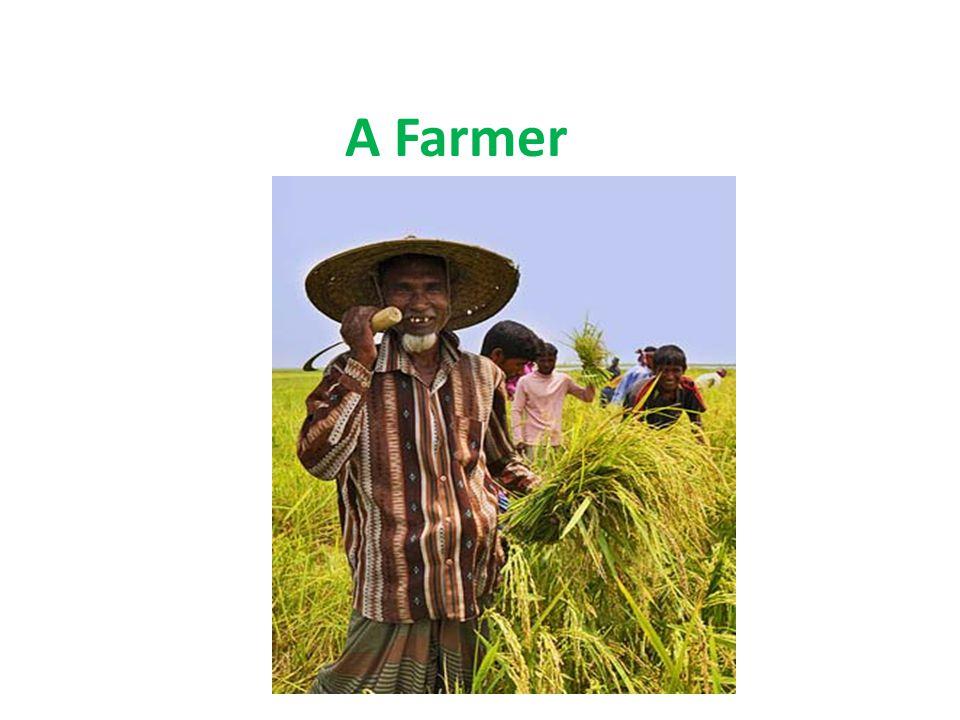 A Farmer Presentation