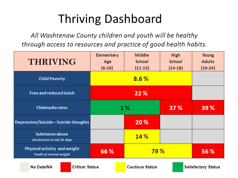 Thriving Dashboard All Washtenaw County children and youth will be healthy through access to resources and practice of good health habits. No Data/NAC