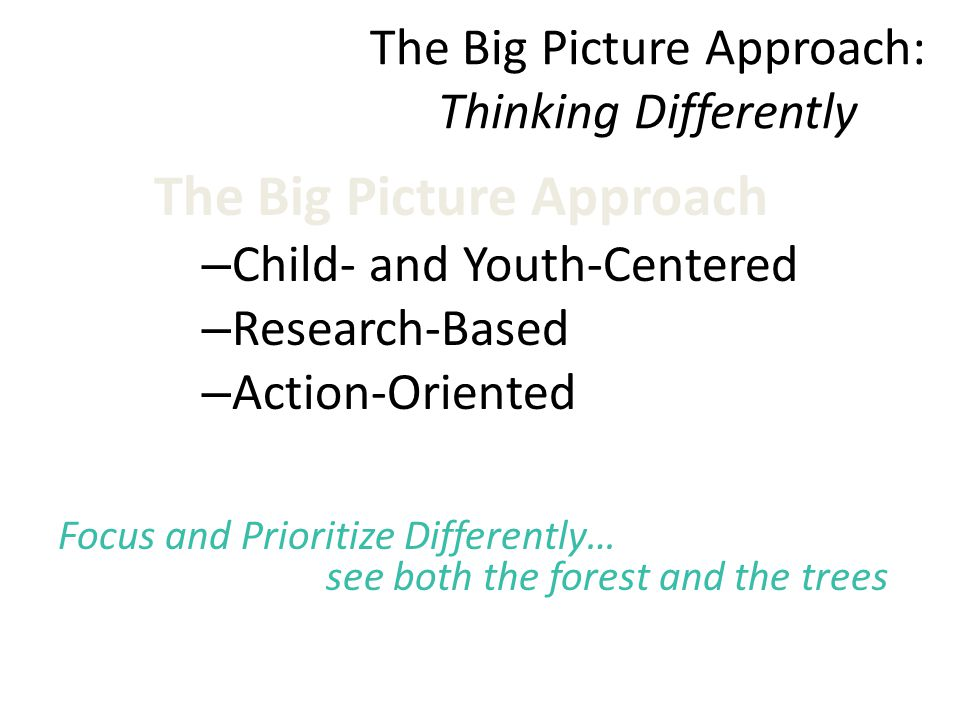 The Big Picture Approach – Child- and Youth-Centered – Research-Based – Action-Oriented Focus and Prioritize Differently… see both the forest and the