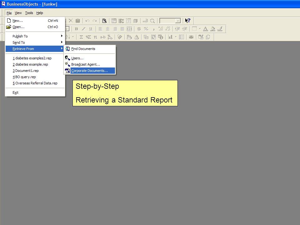 Step-by-Step Retrieving a Standard Report